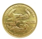 Usa Eagle Goldmünze